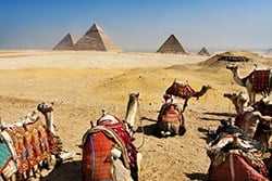 Camel Ride by the Great Pyramids