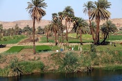 Experience the nile Valley while sailing down the Nile.