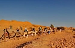 Morocco is a country to savor; it is bordered by the Sahara Desert and serves as a barrier between the Mediterranean Sea and the Atlantic Ocean