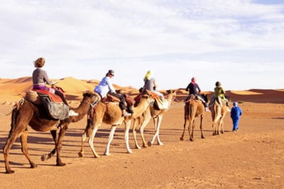 Camel Ride in the Sahara Desert in Morocco