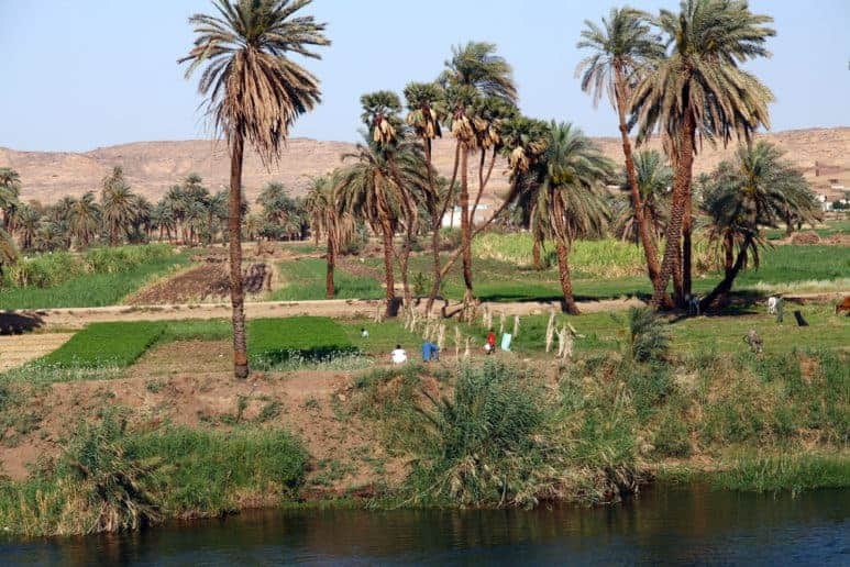 The Riverside of Nile Rive in Upper Egypt. Upper Egypt is one of Egypt destinations for history lovers