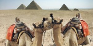 Giza: The Home of the Great Pyramids – All You Need to Know in 2019