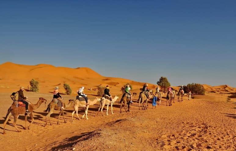 MERZOUGA DESERT - Tourists in a Camel caravan in Merzouga Desert, Morocco