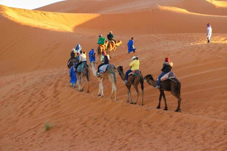 Our Tips for the Best Tour in Marrakesh, Morocco