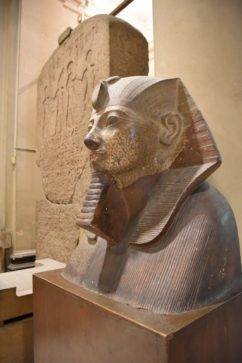 The Egyptian Museum in Egypt best tour