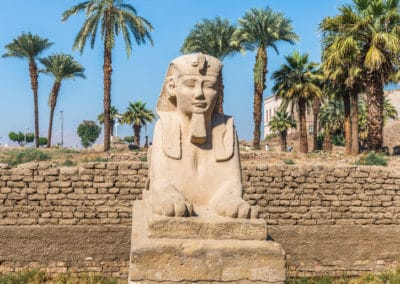 Sphinx statue at Luxor Temple