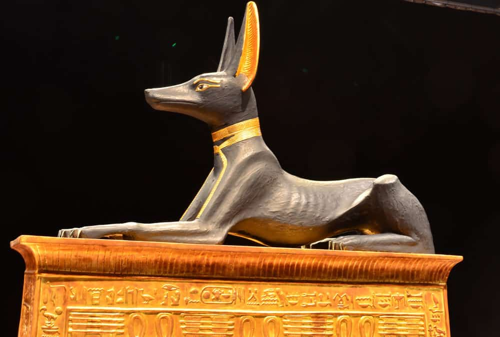 Animals of Ancient Egypt: Where Are They Now?