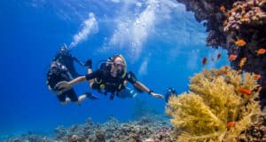 The Top Four Scuba Diving Spots in Egypt's Red Sea