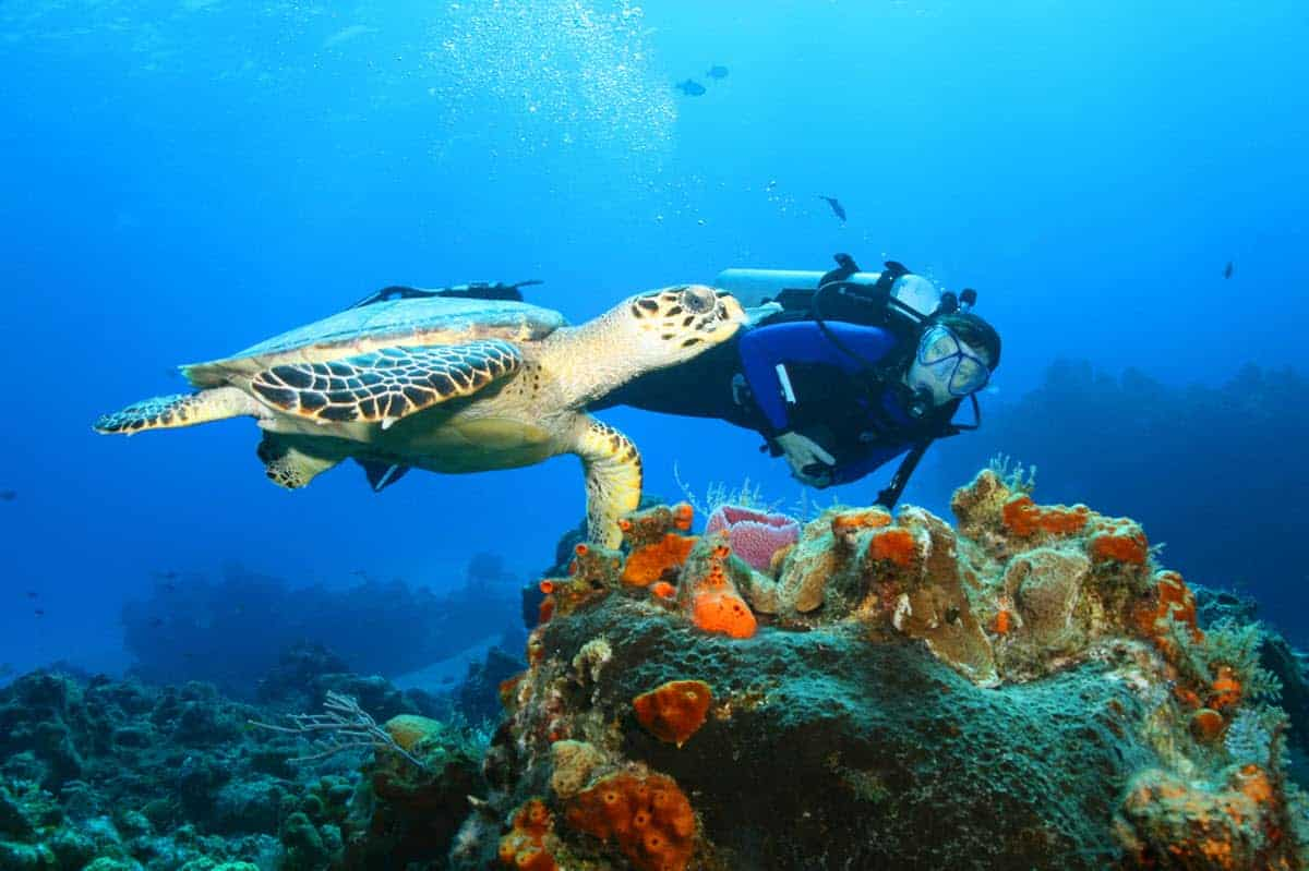 Dahab is one of the best Scuba Diving Spots in Egypt's Red Sea
