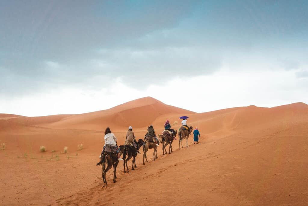 Camelback ride, Morocco